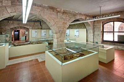 El Museu Arqueològic de Banyoles inicia el trasllat previ a les obres de reforma